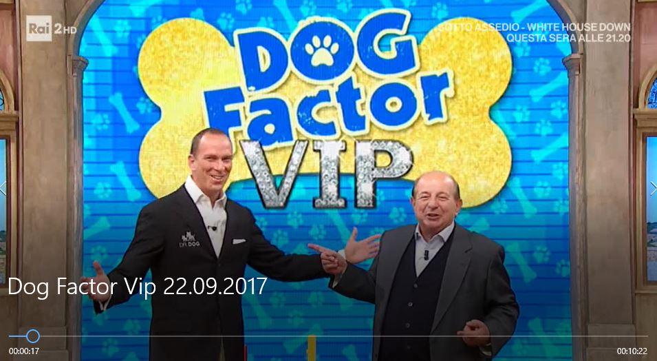 Dog Factor VIP 22.09.2017