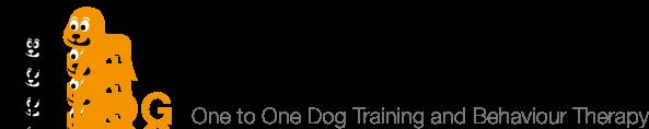 Dr.Dog